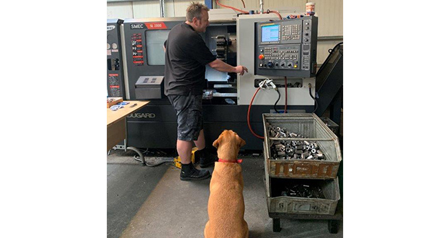 Dugard at Grayline with the workshop dog
